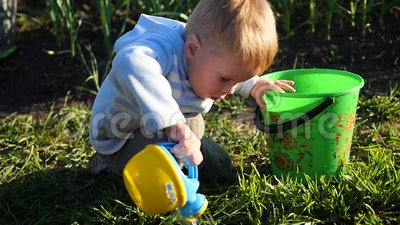 A child with a small watering can water the grass in the yard. Young gardener. A child with a watering can water the grass in the yard stock video