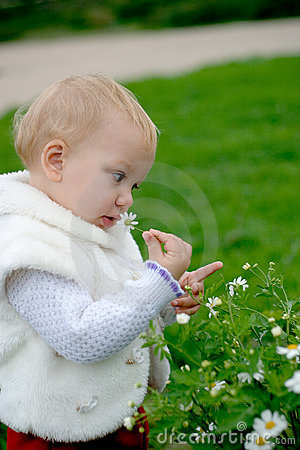 Child Smelling A Camomile