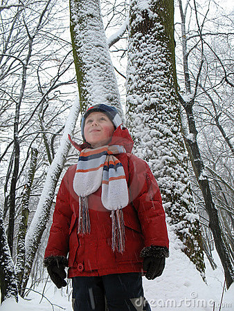 Child in snowbound forest
