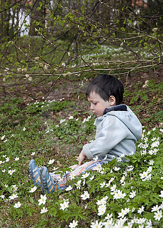 Child in spring forest