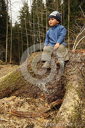 Child on stump