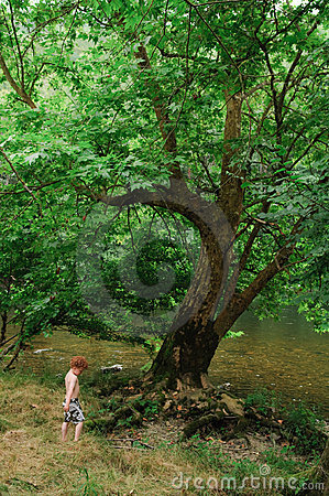 Child and Tree