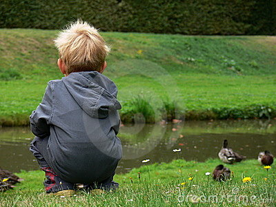 Child watching on the duck