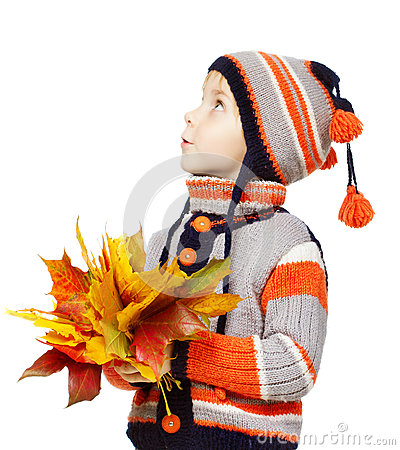 Child in woolen clothes with autumn leaves. Maple fall over white