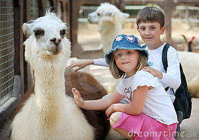 Children and animals in the zoo