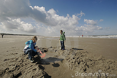 Children digging at the beach