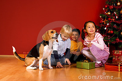 Children and dog sitting by Christmas tree
