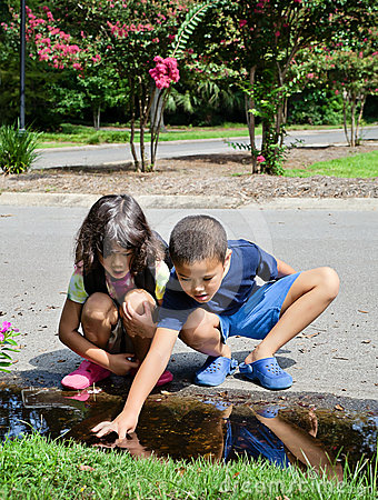 Children Exploring Tadpoles in a Street Puddle