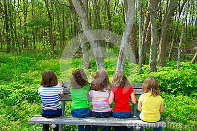 Children Girls Sitting On Park Bench Looking At Forest