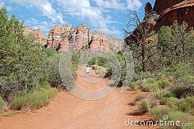 Children hiking arizona desert