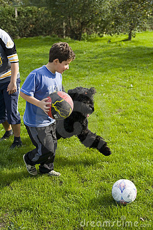 Children play with dog