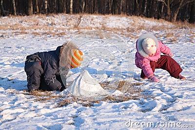 Children play in wood