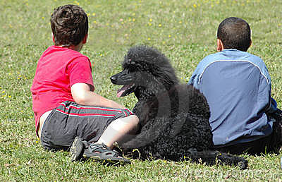 Children with poodle