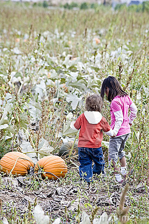 Children in a Pumpkin patch