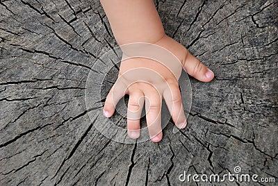 Children s hand