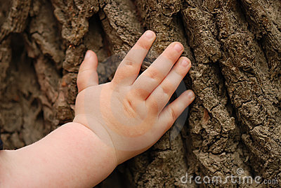 Children s hand is located on an old stump