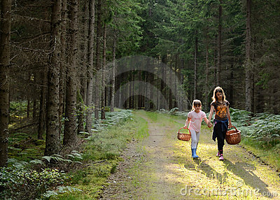Children s way back from forest