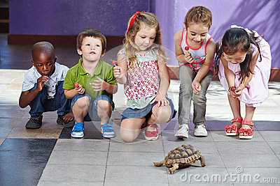 Children with turtle as pet