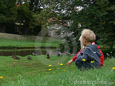 Children watching on a duck