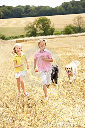 Free Children With Dogs Running Through Summer Harveste Stock Photos - 15552943