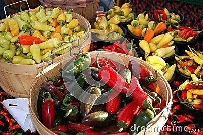 Chile Harvest