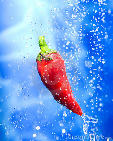 Chilli pepper in a water splash