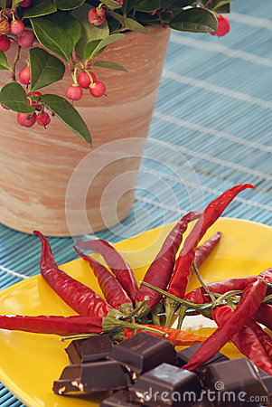 Chilli peppers, chocolate and gaultheria plant