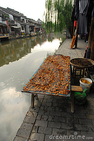 Free China Dry Fish Royalty Free Stock Photos - 21722838