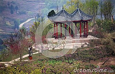 China Red Pagoda Pink Peach Blossoms Sichuan China