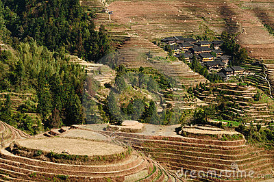 China - rice terraces