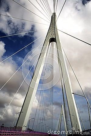 Free China S Hangzhou Bay Bridge Stock Images - 9199324