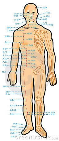 Chinese acupuncture scheme