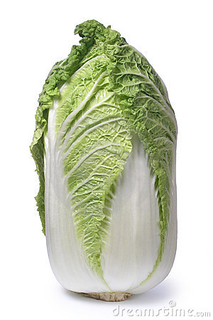 Free Chinese Cabbage Royalty Free Stock Photo - 853995