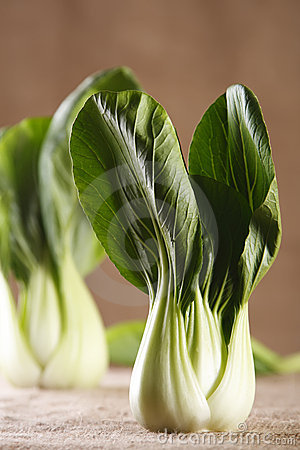 Chinese cabbage bok choy pak-choi on rustic