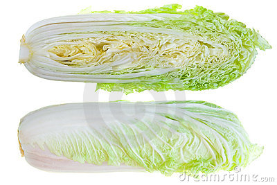 Chinese Cabbages