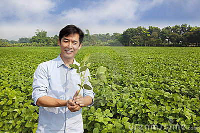 Chinese farmer holding sapling