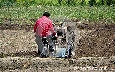 Pengzhou, China: Farmer Plowing Field Editorial Photo