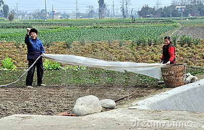 Chinese Farmers Working in Field Editorial Stock Image