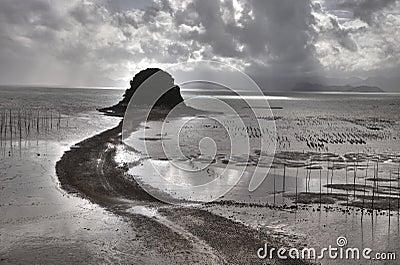 Chinese fishing village intertidal zone  in sunlit