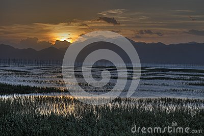 Chinese fishing village intertidal zone  in sunset