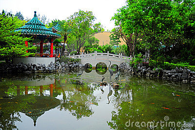 Chinese garden with footbridge