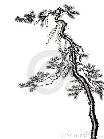 Chinese style tree ink brush drawing