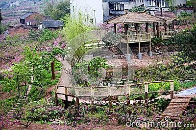 Chinese landscaped garden