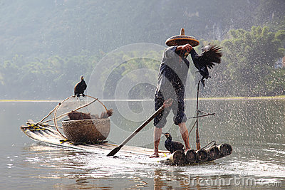 Chinese man fishing with cormorants Editorial Stock Image