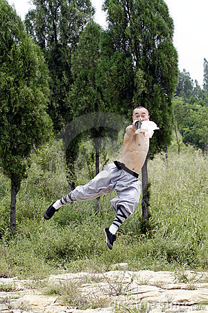 Free Chinese Martial Arts Stock Images - 4751534