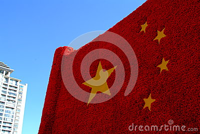 Chinese national flag made of flower