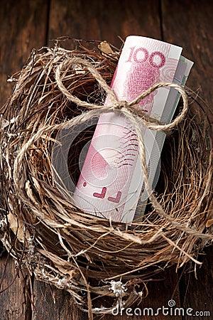 Chinese Nest Egg Money