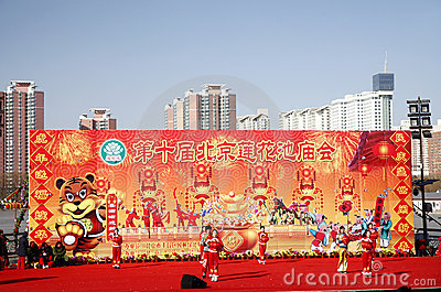 Chinese new year celebration 2010 Editorial Stock Image