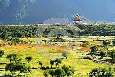 Chinese pagoda in Tibet
