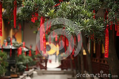 Chinese Red Ribbons on Trees